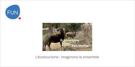 L'écotourisme : Imaginons-le ensemble | Mooc Francophone | E-pedagogie, apprentissages en numérique | Scoop.it