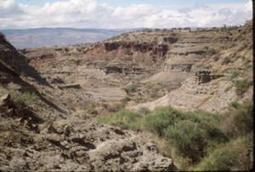 Fluctuating environment may have driven human evolution | Nature enviroment and life. | Scoop.it