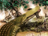 """Prehistoric """"Shield""""-Headed Croc Found 