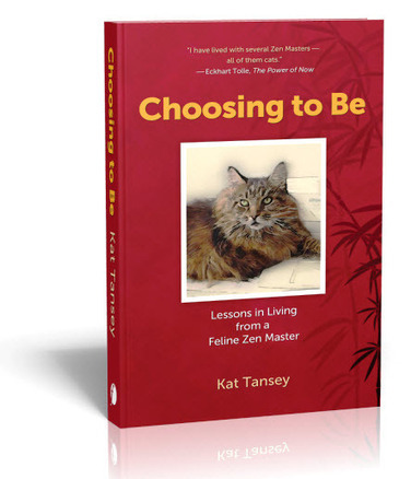 Choosing to Be — Lessons in Living from a Feline Zen Master | Meditation techniques | Scoop.it