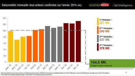 Search : Qui a investi le plus en France en 2014 ?   Web Marketing & Social Media   Scoop.it