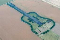 Una guitarra de 7.000 árboles en las pampas | Agroindustria Sostenible | Scoop.it