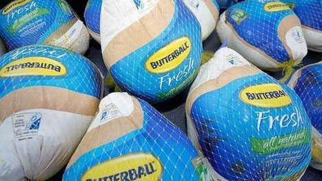 The Mystery of Butterball's Too-Skinny Turkeys | Management | Scoop.it