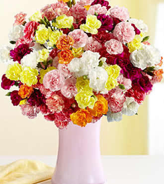 36pcs Colorful Carnation Bouquet delivers to your best friend on Friendship Day – Colorful_Carnation_Bouquets#019 | mother's day flower | Scoop.it