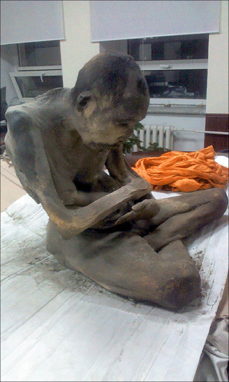 Mummified remains of '200 year old man in lotus position' found in Mongolia | The Global Village | Scoop.it