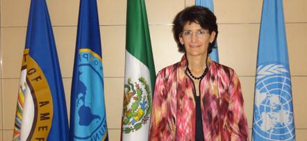 ONU México | ONU, Organización de las Naciones Unidas| | Scoop.it