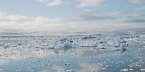 Des climatologues alertent : le réchauffement climatique va beaucoup plus vite que prévu | Toxique, soyons vigilant ! | Scoop.it