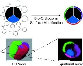 3D construction: Microparticles made of three chemically ... - Phys.org | START-UPS - TRANSITION ENERGETIQUE - DEVELOPPEMENT DURABLE - ECONOMIE SOLIDAIRE - VEILLE DURABLE & ECOLOGIE | Scoop.it