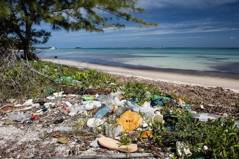 New toxic time bomb: Contaminants in marine plastic pollution | Zero Waste Europe | Scoop.it