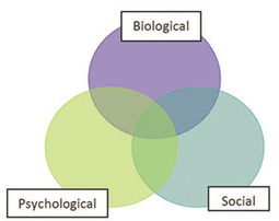 9.2.1The biopsychosocial model - Non-Communicable Diseases, Emergency Care and Mental Health HEAT Module - LabSpace - The Open University   Biopsychosocial Model   Scoop.it