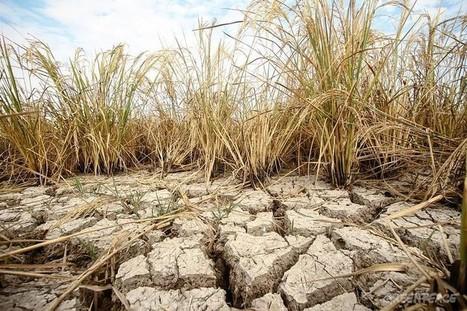 Es el momento de actuar contra el cambio climático | Agua | Scoop.it