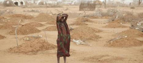 Famine in Somalia: causes and solutions | Theme 4: People & Development | Scoop.it