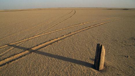 Arrêtez de chercher, il n'y a plus aucun coin de nature intacte sur Terre | Biodiversity protection | Scoop.it