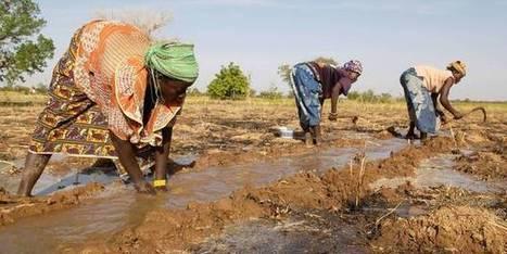 La Coalition contre la faim appelle les dirigeants à la cohérence   Questions de développement ...   Scoop.it