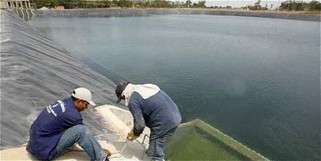 Crisis de suministro de agua en Cali - ElTiempo.com   Infraestructura Sostenible   Scoop.it