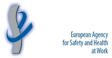 Online tool to carry out risk assessments in the workplace - Gozo News   OHS, the Aviation industry & Myself   Scoop.it