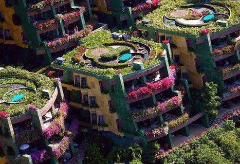 Urban Green | Organic Farming | Scoop.it
