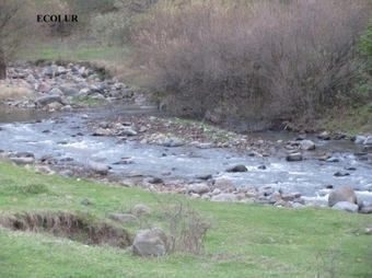 Constructing Small HPP on Marts River without Environmental Expert Assessment | Saving the Wild: Nature Conservation in the Caucasus | Scoop.it