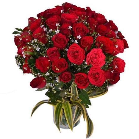 Get Exclusive & Affectionate Online Flowers for Rose Day. | Us2guntur | Scoop.it