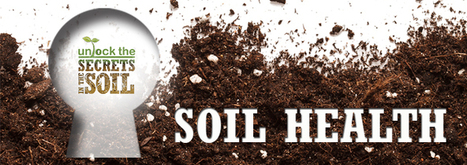 Soil Health | NRCS | compost for food production from food scraps | Scoop.it