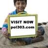 POL 303 ASH Course Tutorial (pol303.com)