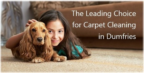 Carpet Cleaning Dumfries VA, Carpet Cleaners | Nature's Chem-Dry | Business | Scoop.it