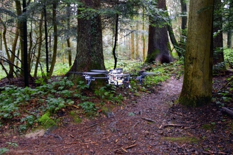 This drone can automatically follow forest trails to track down lost hikers | Amazing Science | Scoop.it