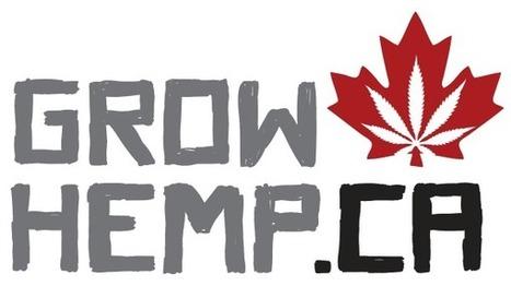 GrowHemp.ca | Cânhamo Industrial | Scoop.it