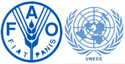 UNECE/FAO Bulletin Reports on Wood Energy, Forest Certification and Timber Trade | AgroParisTech Ecosystèmes Tropicaux | Scoop.it