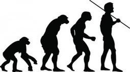 Change: Evolution or Revolution?   Yammer Blog   Business Change Capability   Scoop.it