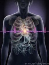How Would High Blood Pressure Benefit Teens' Adjustment, Quality of Life? - PsychCentral.com (blog) | Really Relevant Psychology | Scoop.it