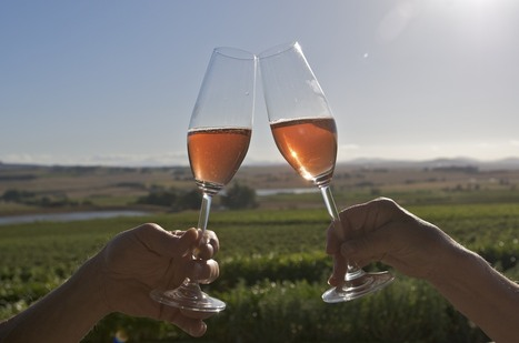 Ceres Luxury Winery Tour, Ceres Wine Tasting Tour | Bay Area Limo Wine Tour Service | Scoop.it