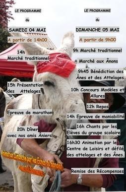 Fête de l'Âne 2013 - Site de marchés antan marsaneix ! | PERIGORD | Scoop.it