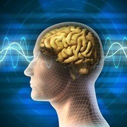 Le syndrome de Tourette causé par un agent chimique cérébral | Médicaments et traitements | Scoop.it