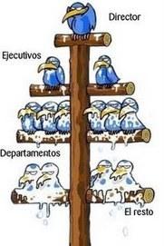 Jerarquización y coordinación en las organizaciones | eficiencia y productividad | Scoop.it