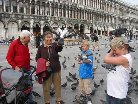 Arnaques touristiques : l'amertume au lendemain des vacances de ... - Chine.org | Qualité Accueil Tourisme | Scoop.it