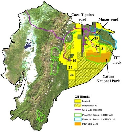 Ecuador To Sell A Third Of Its Amazon Rainforest To Chinese Oil Companies | how important is the Amazon rainforest | Scoop.it