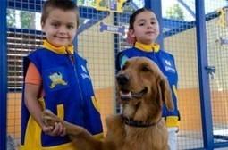 The Dog Whisperer on KidZania: KidZania Adds Canine Center ... | Animals R Us | Scoop.it