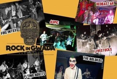 Franc succès pour la première édition du festival Rock in Gwada   Les infos de SXMINFO.FR   Scoop.it