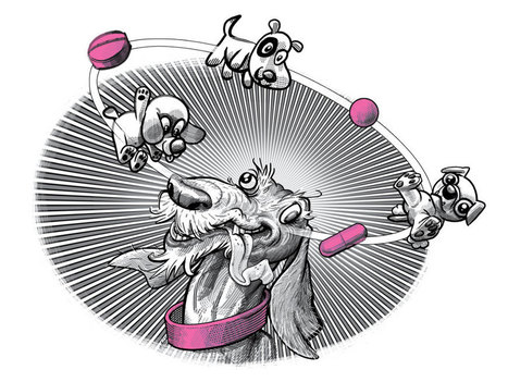 Why Testing Drugs on Our Dogs Is Good for Our Health | WIRED | leapmind | Scoop.it