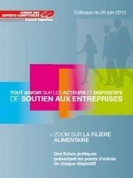 Guide 2013 des aides aux entreprises | Passion Entreprendre | Scoop.it