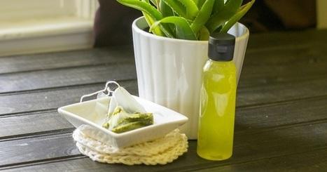 Homemade Green Tea & Aloe Skin Toner To Tighten Pores, Remove Excess Oil & More | Raw Edible Organic Skin Care | Scoop.it