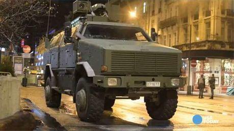 Belgium fights terrorism with cat meme on #BrusselsLockdown | Peer2Politics | Scoop.it