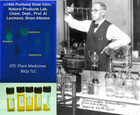 First Echinacea, now Anti-oxidants | Episurveillance | Scoop.it