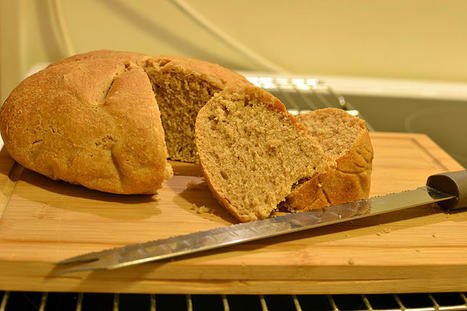 Cato's Bread | LVDVS CHIRONIS 3.0 | Scoop.it