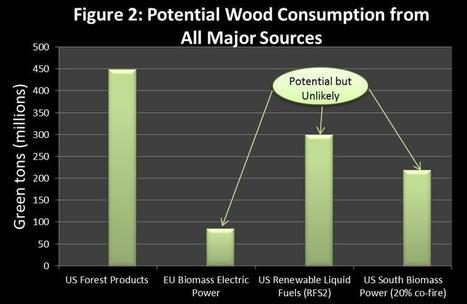 The Real Threat to Forests in the US South | Timberland Investment | Scoop.it