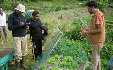 Introduzione all'agroecologia | Agricoltura sostenibile | Scoop.it