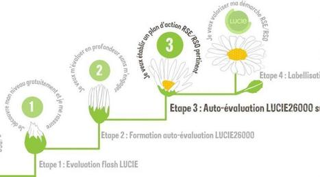 Entreprises. Une démarche plus simple pour entrer en RSE   Responsabilité globale et performance durable des entreprises   Scoop.it
