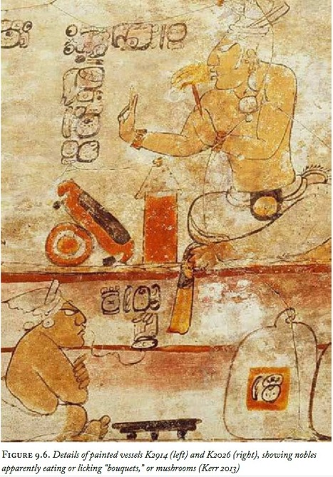 Techniques of Luminosity: Iron-Ore Mirrors and Entheogenic Shamanism among the Ancient Maya   ayahuasca   Scoop.it