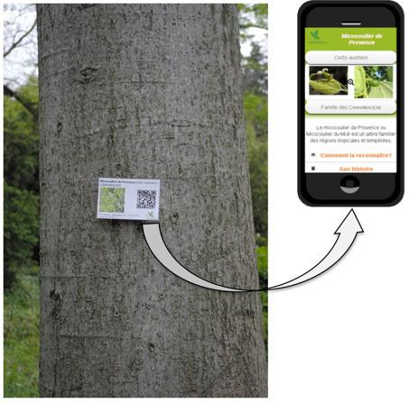 Créer votre sentier botanique à partir de Qrcodes ! Participation au projet Smart'flore | Ressources pour les TICE en primaire | Scoop.it